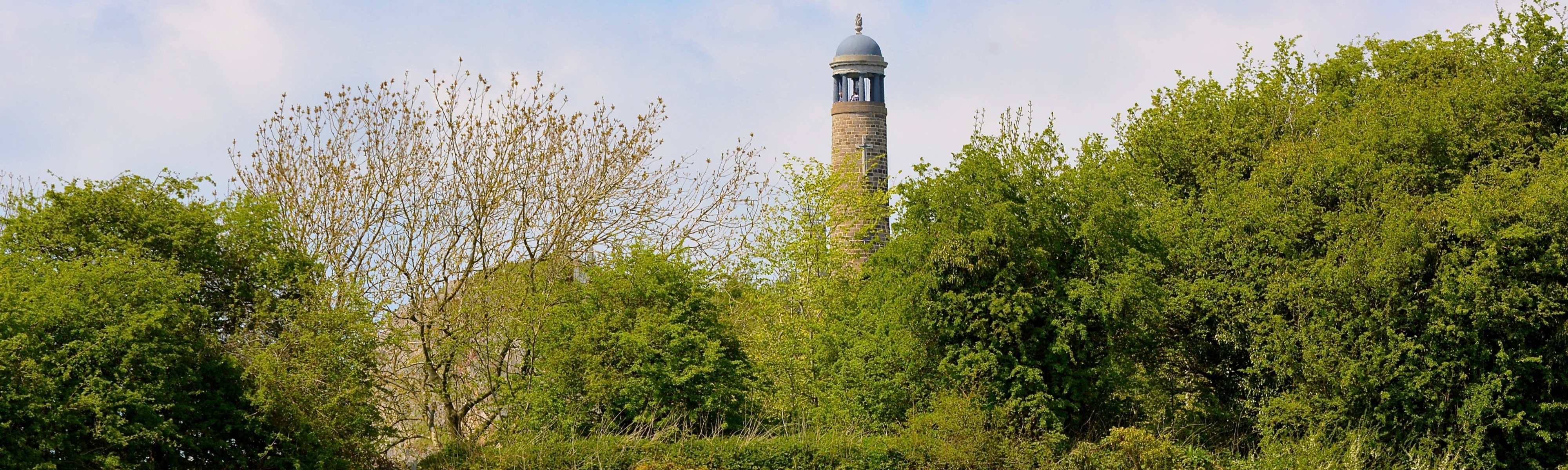 Crich Stand in trees by Paul Yorke