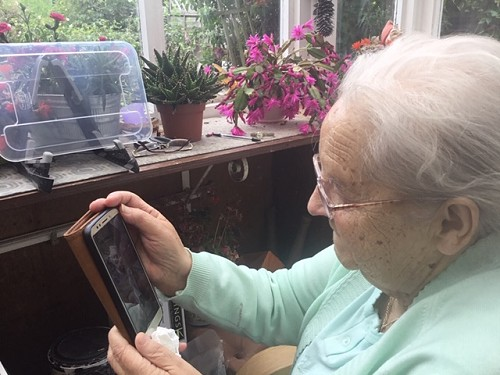 lady using a mobile phone to video call