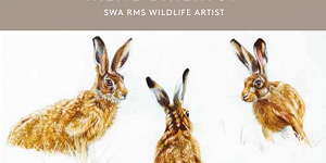 Irene Brierton wildlife artist advert