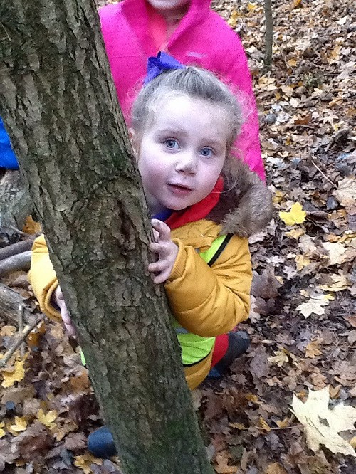 child and tree trunk at forest school